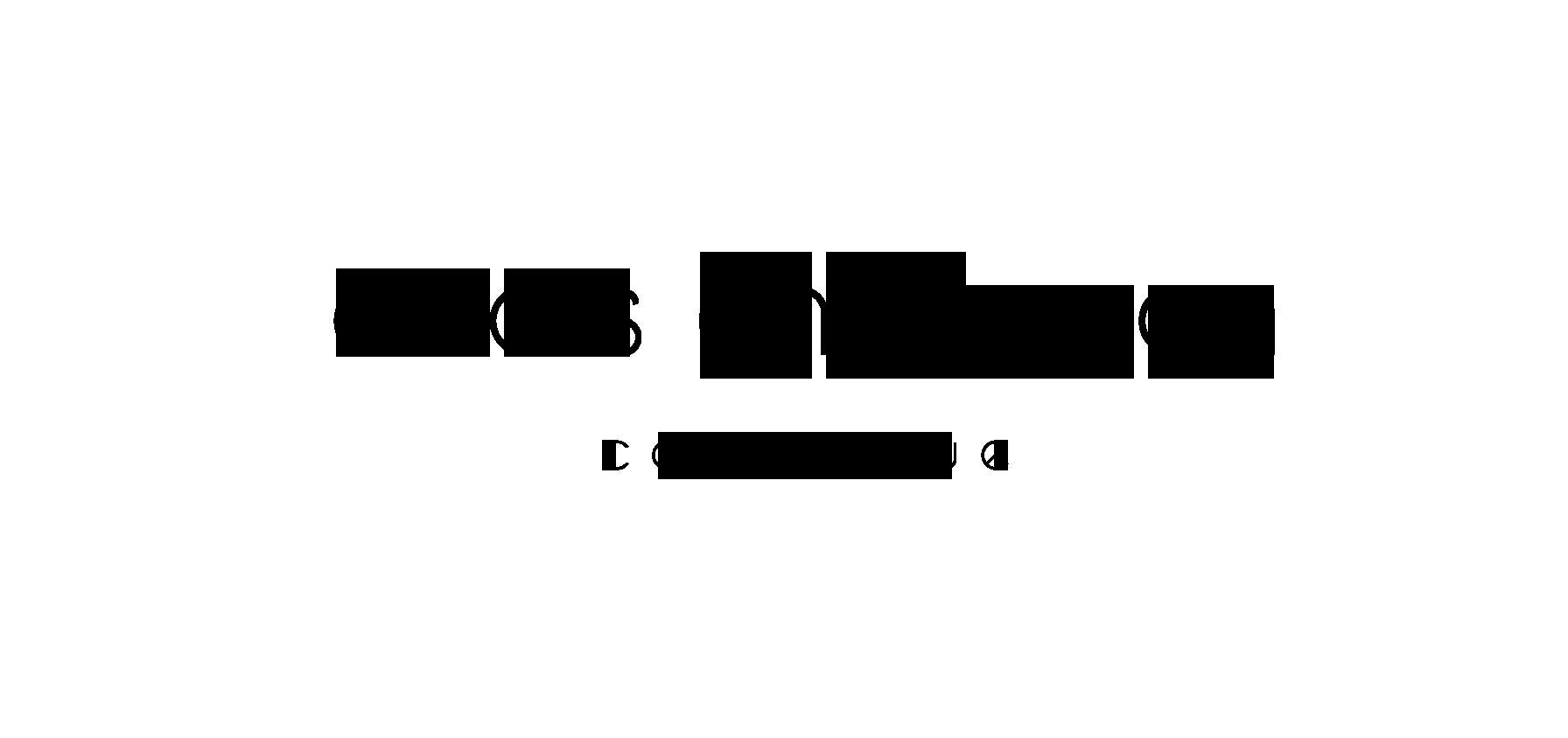 anais-chappron-logo-2 Accueil